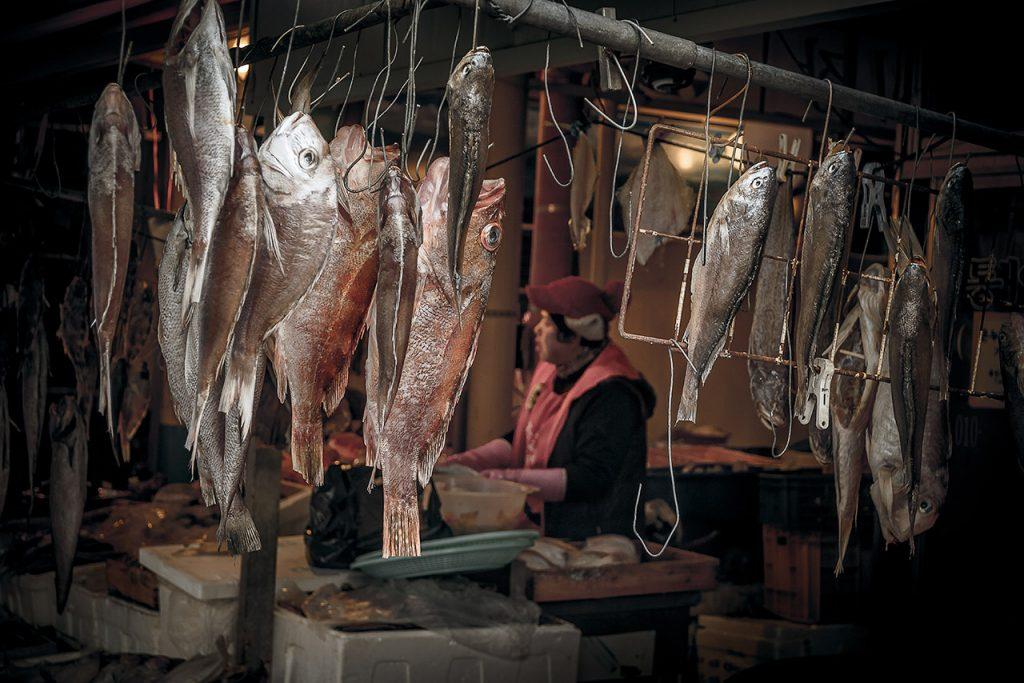 Woman working in fish market, South Korea